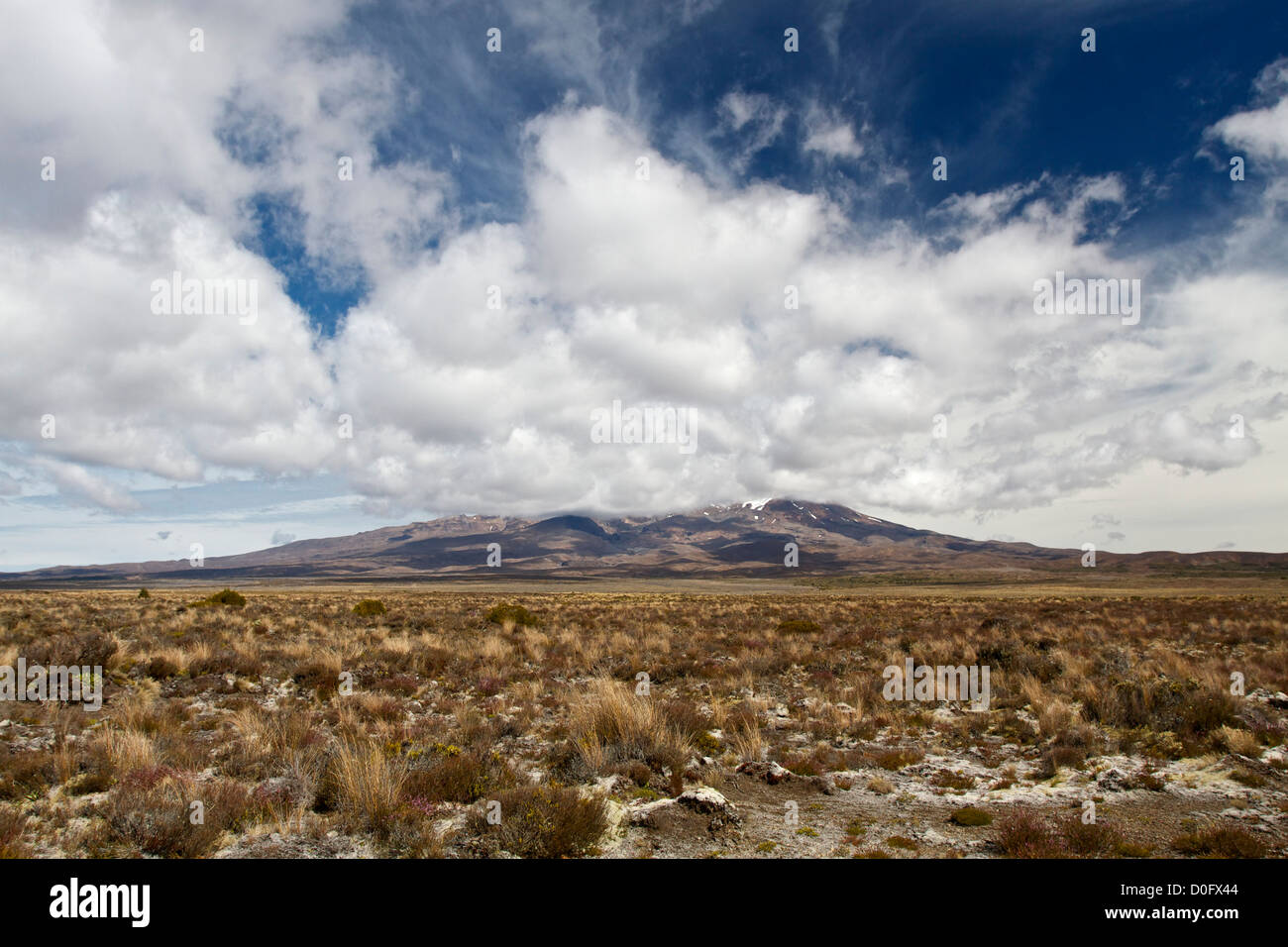 View of active volcano Mount Ruapehu, on the Central Plateau of the North Island, New Zealand. - Stock Image