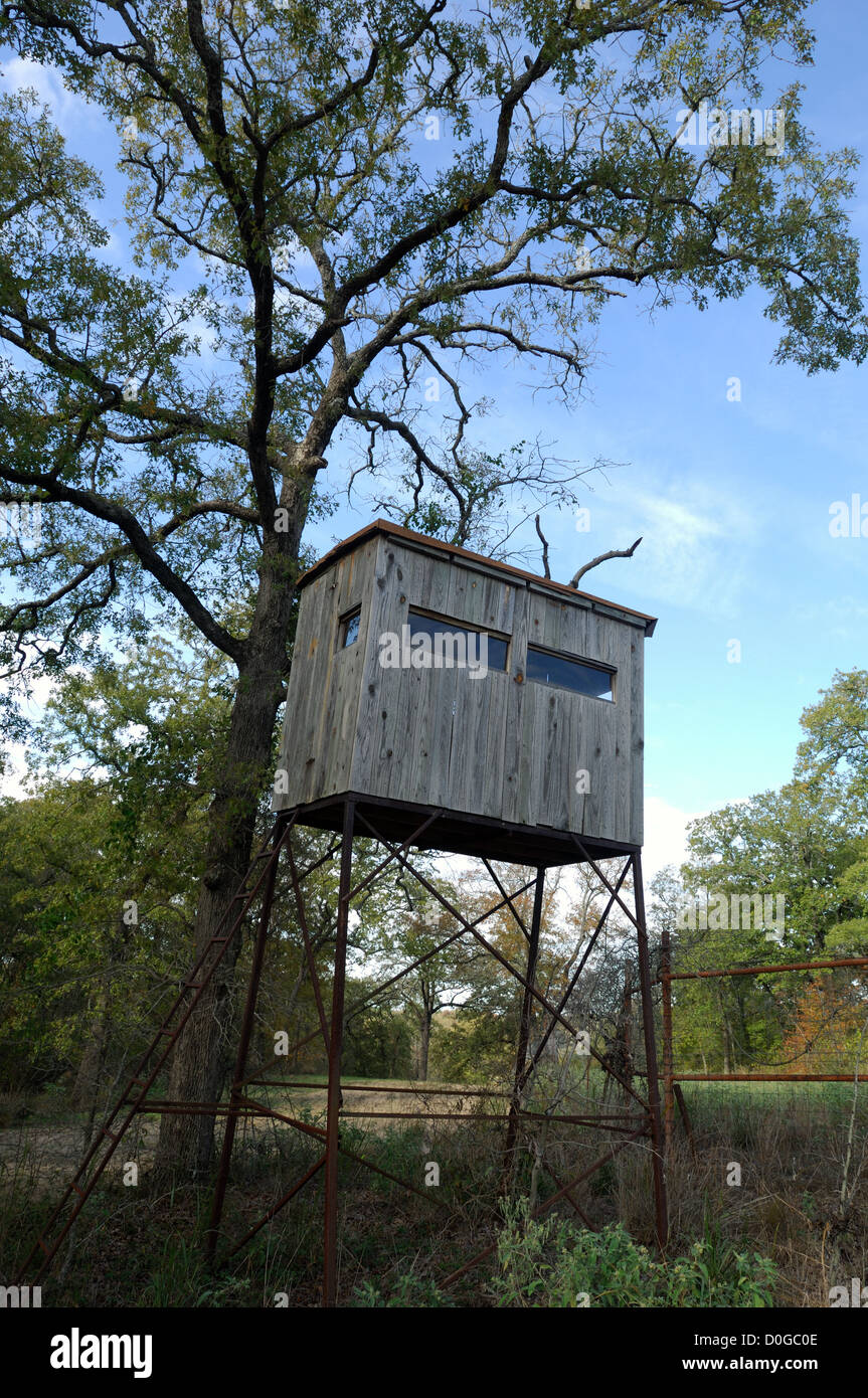Deer hunting blind in near Athens Texas Stock Photo