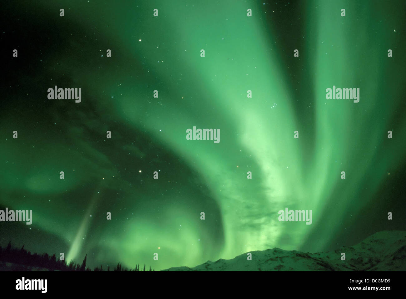 Northern Lights Over the Foothills of the Brooks Range - Stock Image