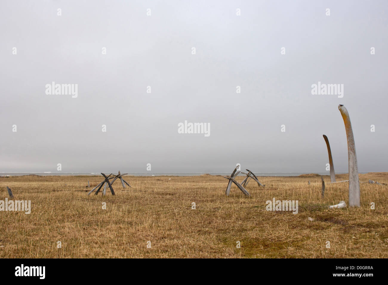 Inupiaq Graveyard Marked with Bowhead Whale Bones - Stock Image