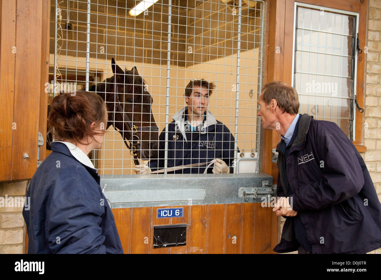 Vets discuss a sick horse, Newmarket Equine animal Hospital, Newmarket Suffolk UK - Stock Image
