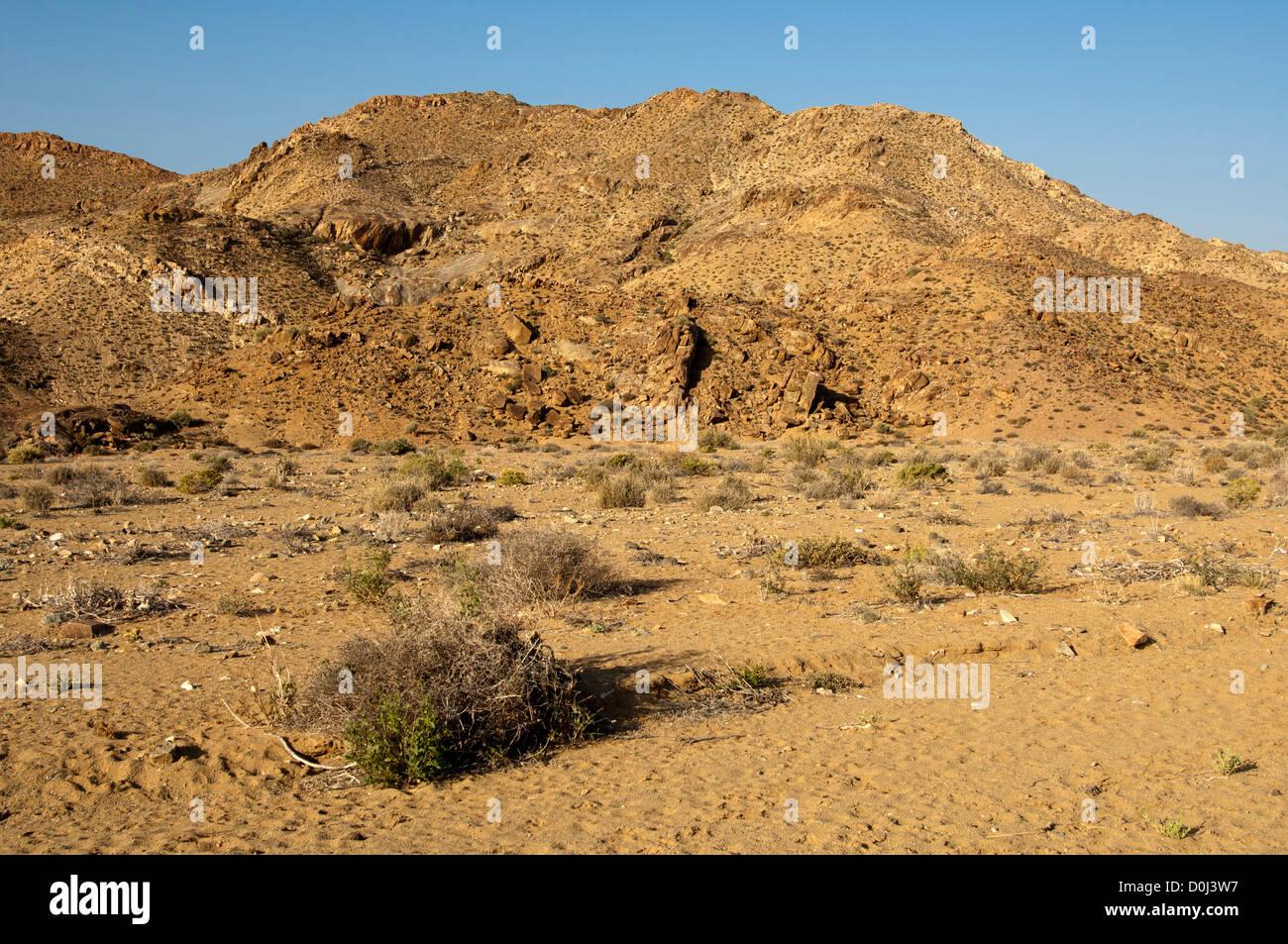 Mountainous desert landscape of the Richtersveld, Richtersveld National Park, Northern Cape, South Africa - Stock Image