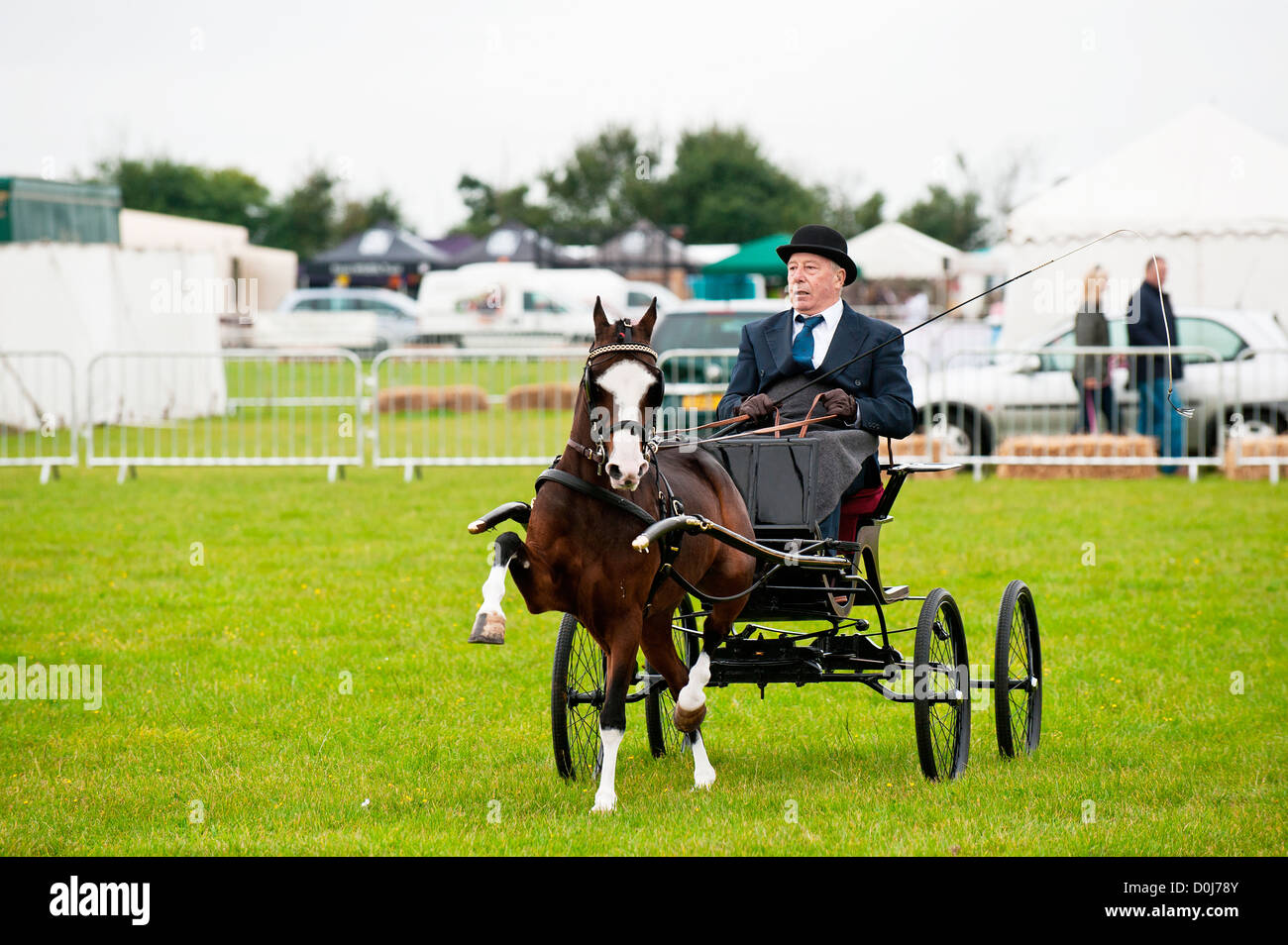 A horse and carriage at the Orsett Country Show. Stock Photo