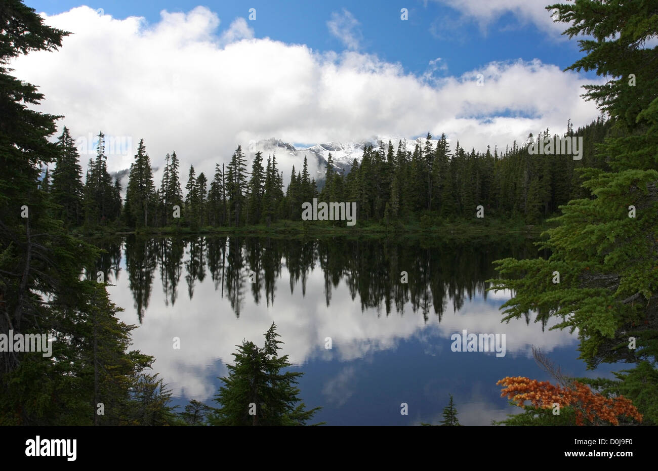 Kwai Lake at the Forbidden Plateau, Strathcona Park, Vancouver Is. BC,Canada in September showing Strathcona Peaks - Stock Image