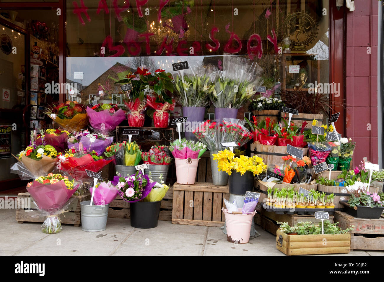 A display of flowers and potted plants for Mother's Day. - Stock Image