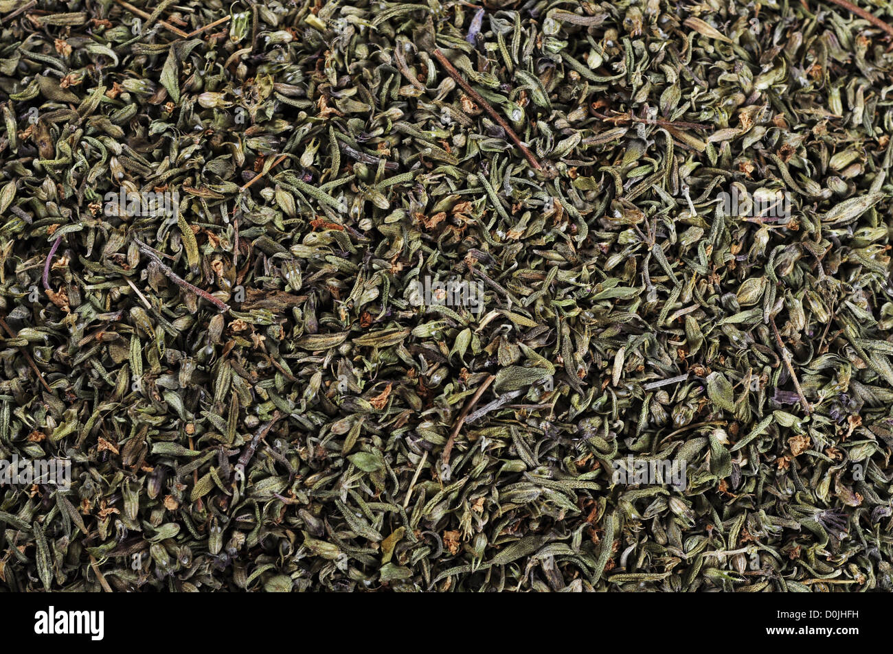 Dried savory texture closeup, may used as background - Stock Image
