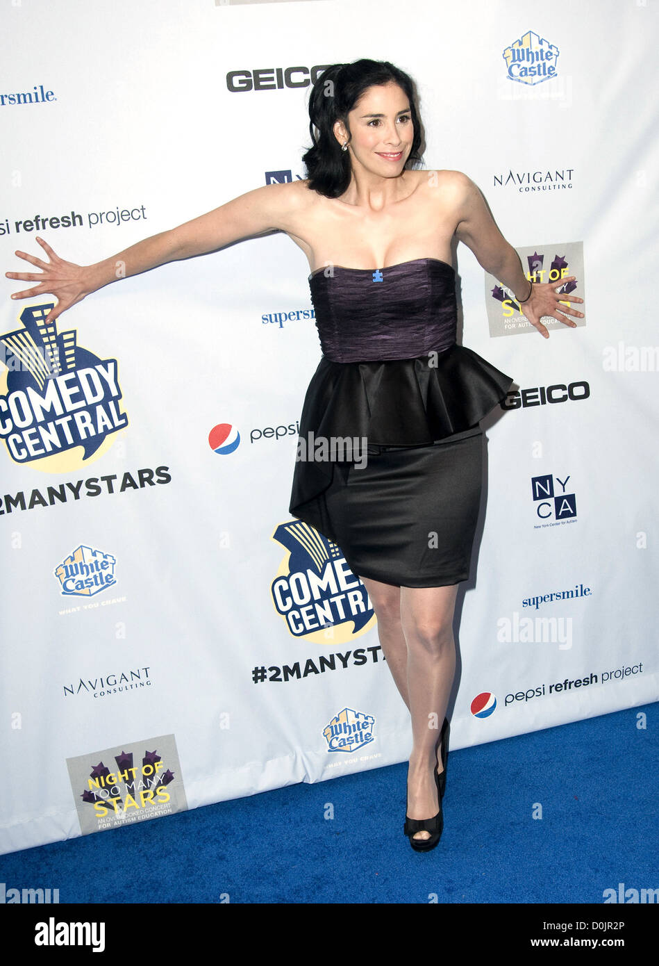 Sarah Silverman nudes (61 foto), photo Fappening, YouTube, lingerie 2016