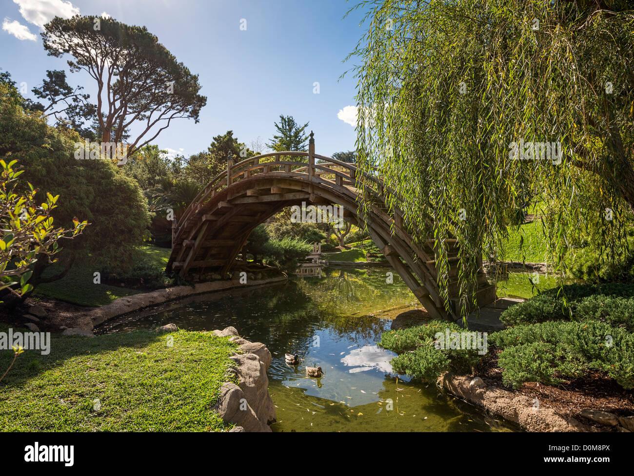 The beautifully renovated Japanese Gardens at the Huntington Library ...
