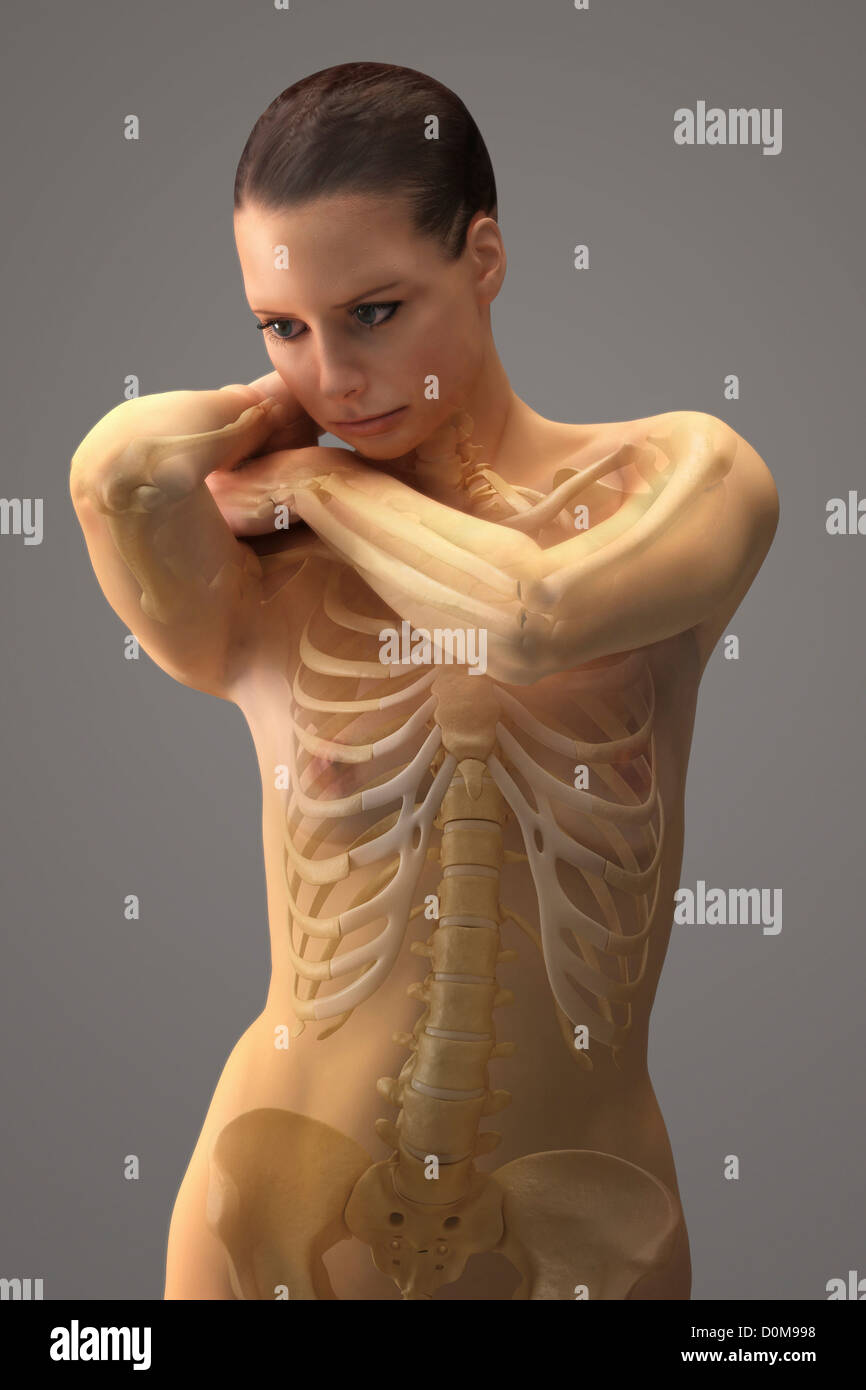 Standing posed female with the bones of the skeleton visible. - Stock Image