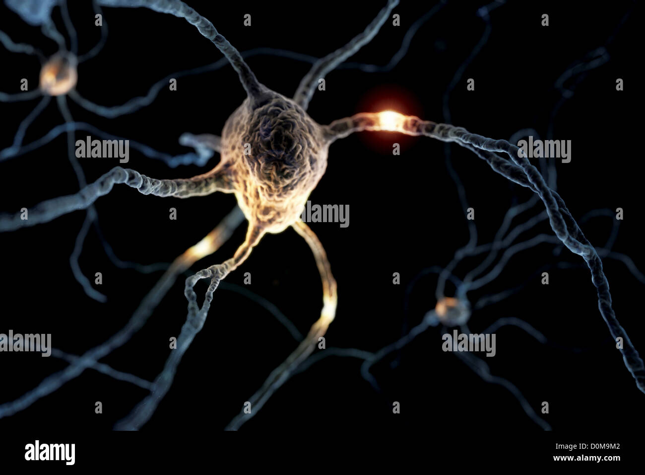 Microscopic styled visualization of neurons. - Stock Image