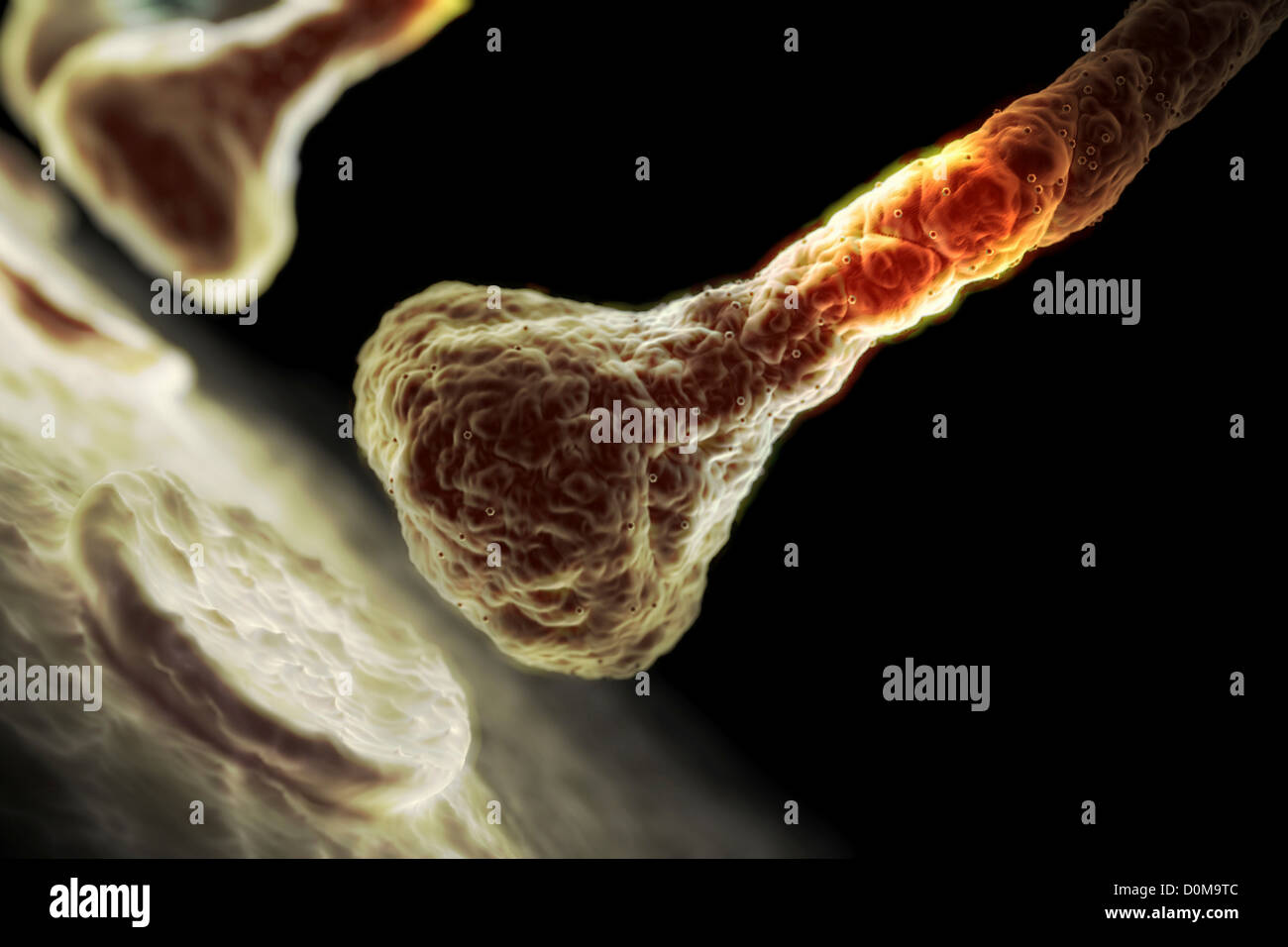 Microscopic styled visualization of a synapse. - Stock Image