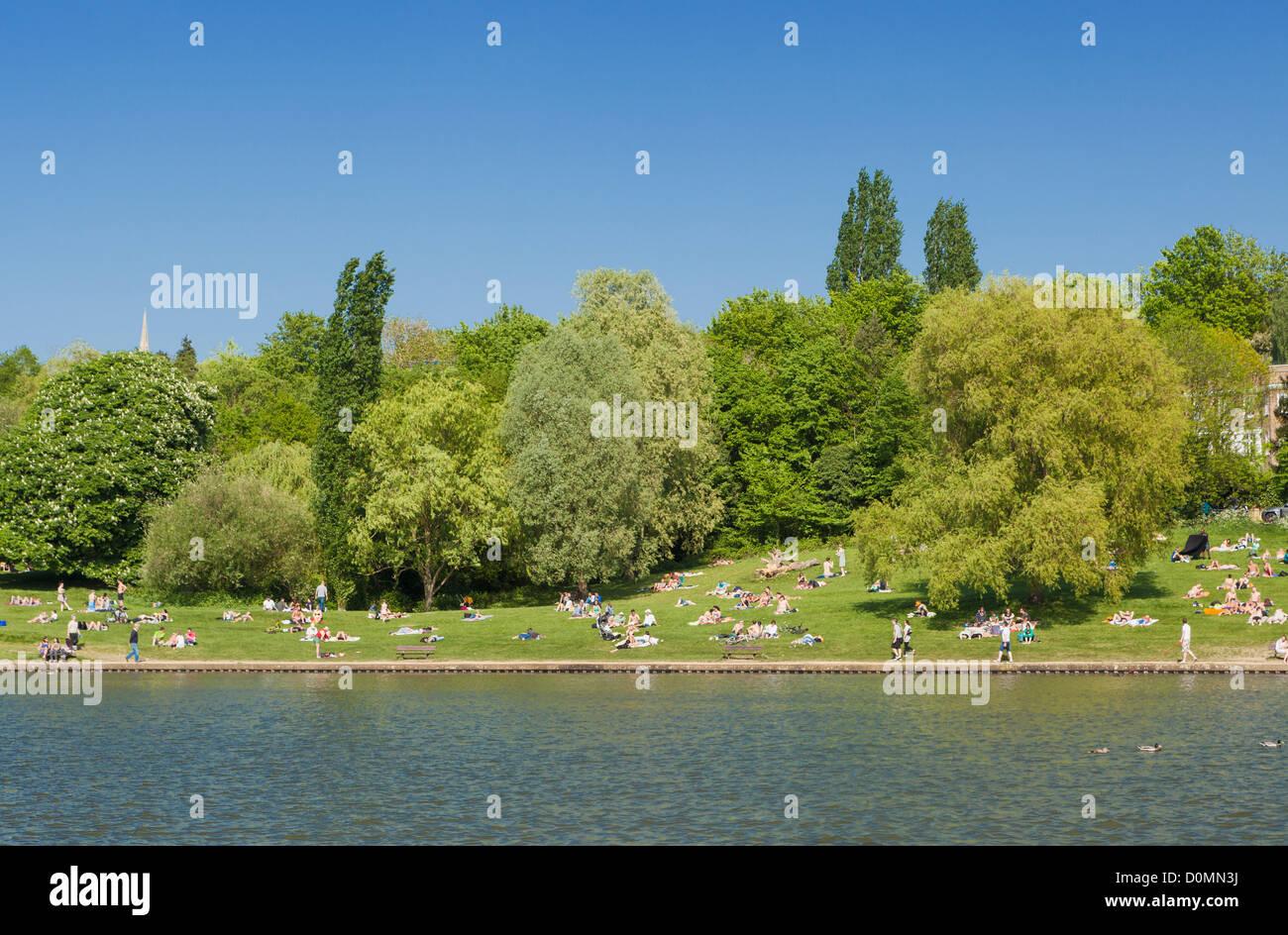 Sunbathers at Hampstead Heath , London, UK - Stock Image