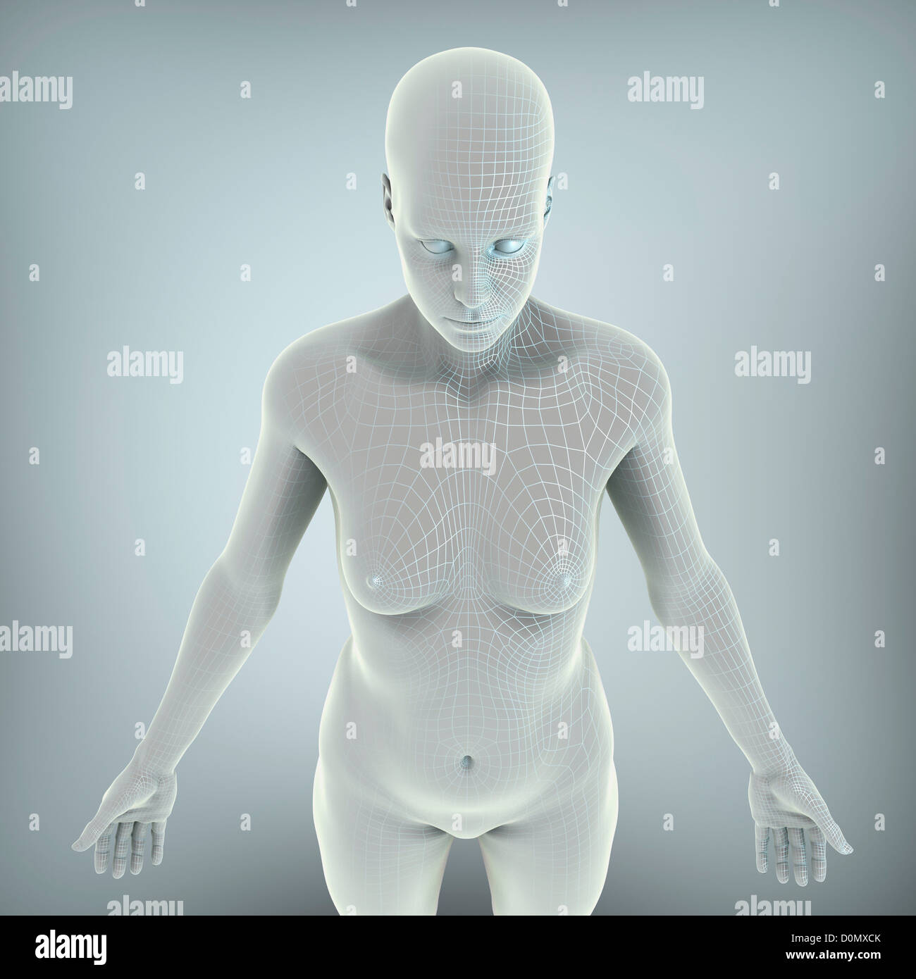 Wire frame model layered over a body to represent a digital human ...