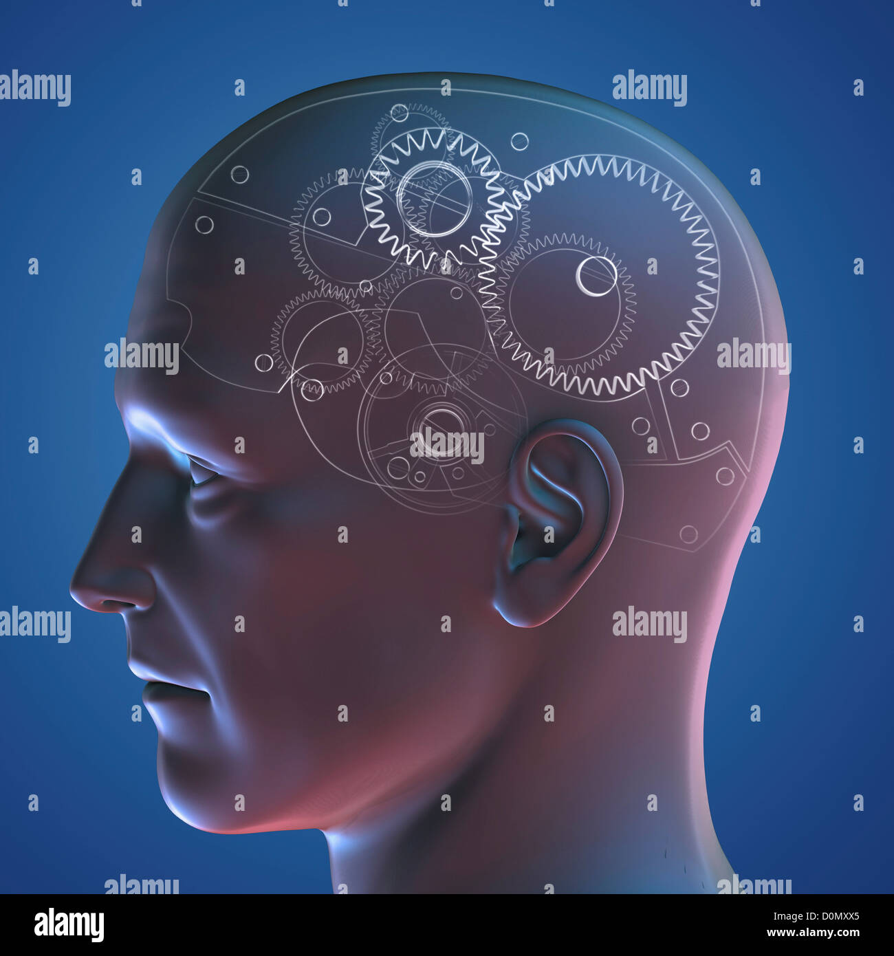 Anatomical model of a human head representing the human mind as a gear system. Stock Photo