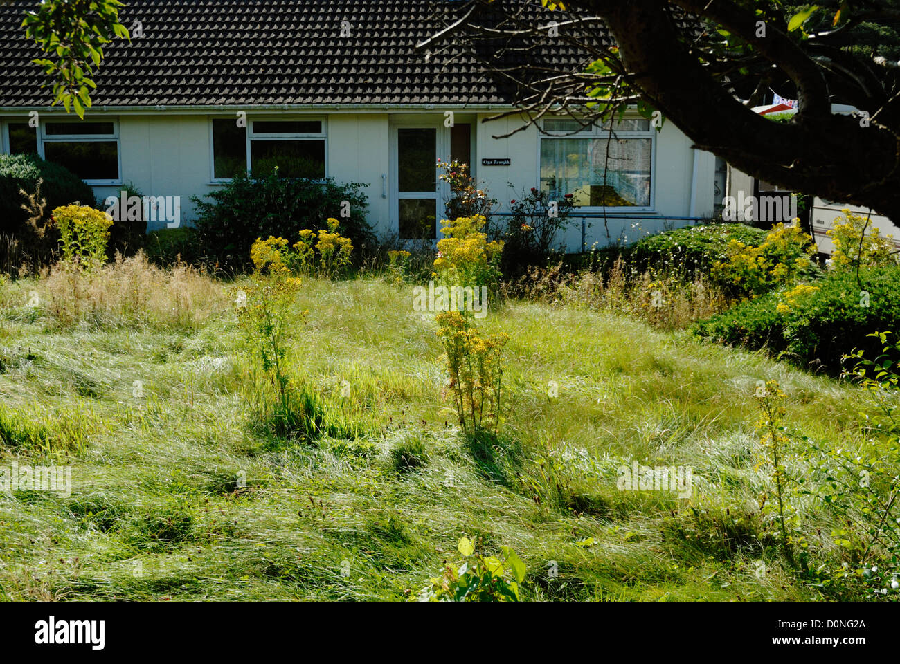 Unoccupied house, Wales - Stock Image