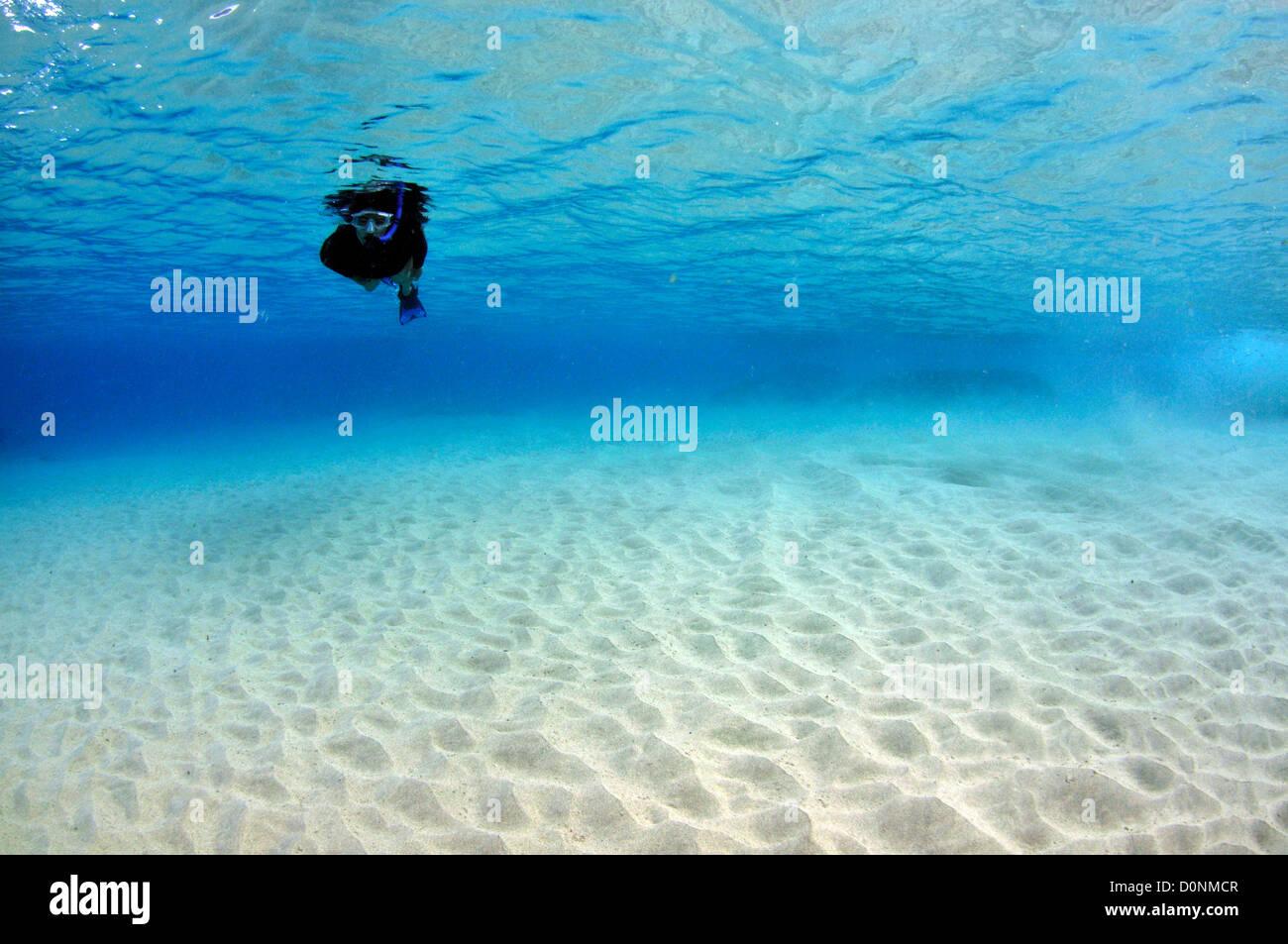 Snorkeler Enjoys Crystal Clear Waters Close To Coast Makua Beach