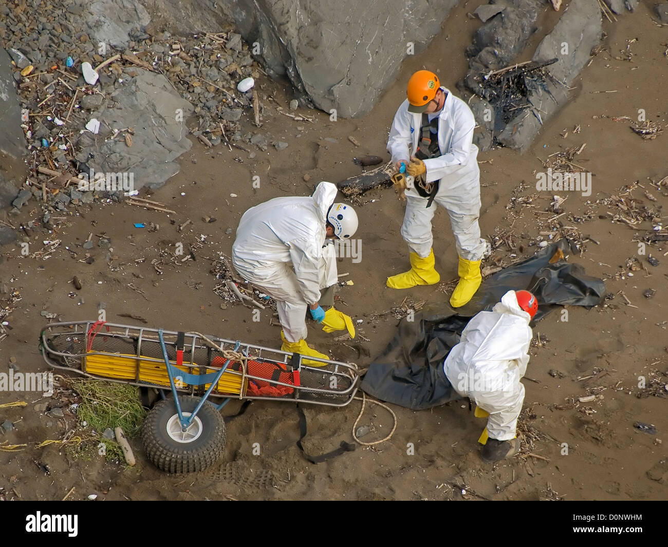 Cleanup Crew Near Rodeo Beach - Stock Image