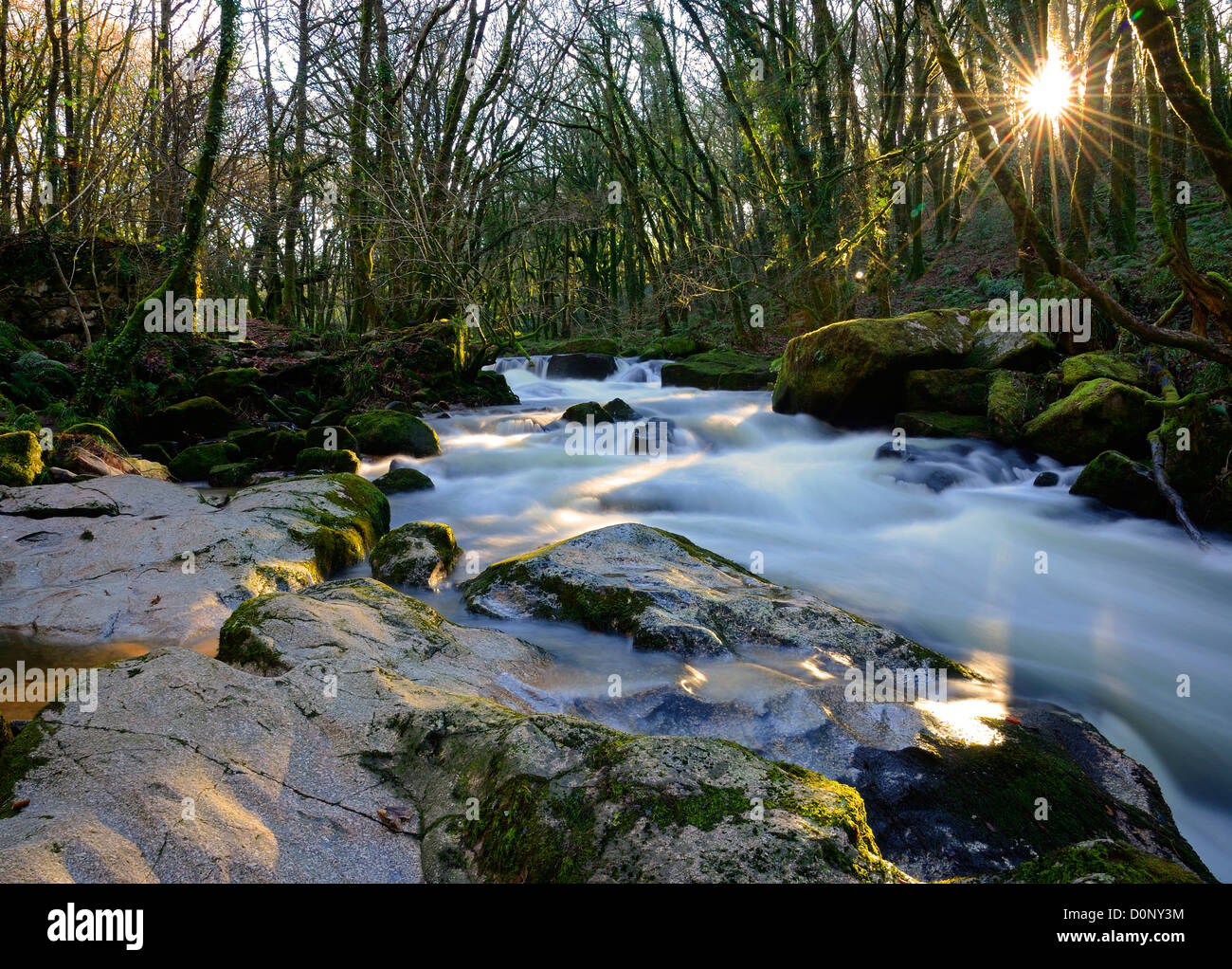 golitha falls on the river fowey, bodmin moor, cornwall, england, uk - Stock Image
