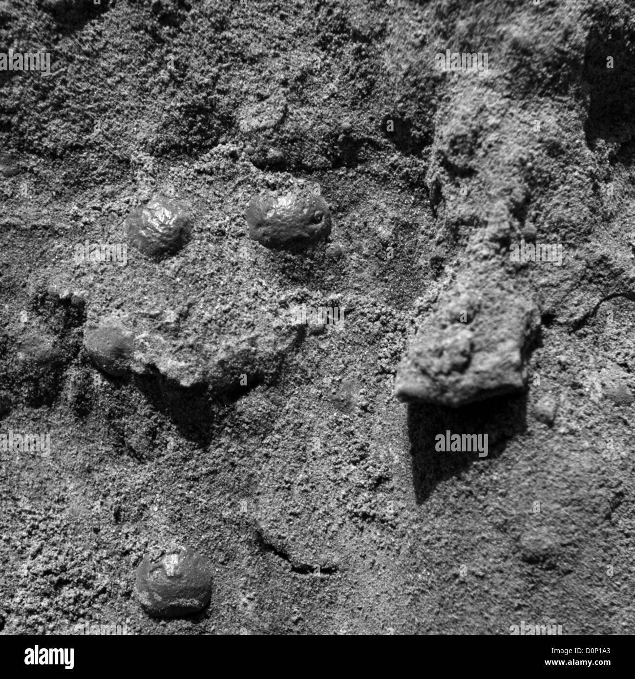 Spherical Objects Embedded in Martian Rock - Stock Image