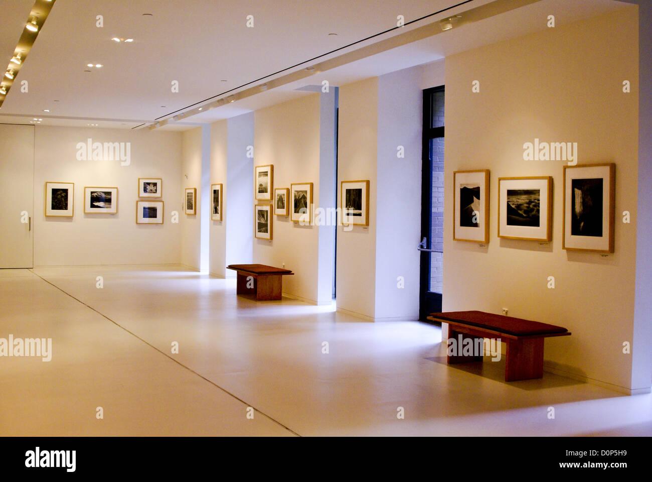 Art Gallery - Stock Image