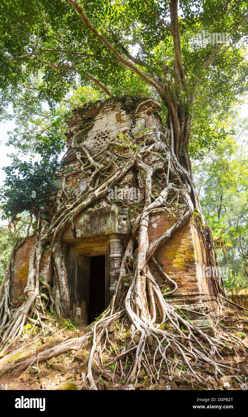 Ancient temple Koh Ker,Cambodia - Stock Image