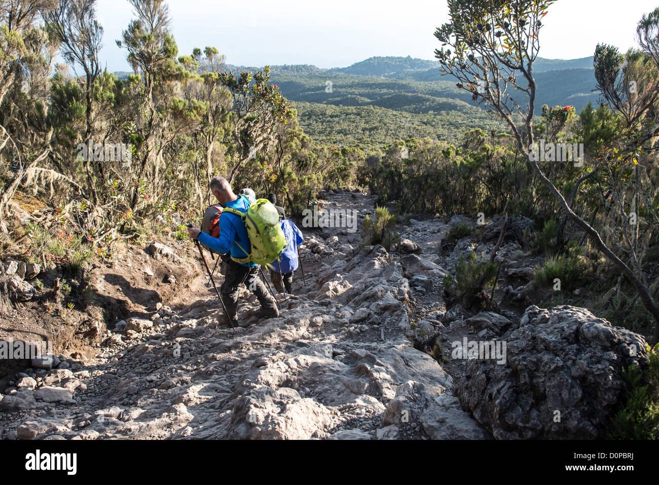 MT KILIMANJARO, Tanzania - Climbers descend down at rocky and steep section of Mweka Trail on Mt Kilimanjaro. - Stock Image