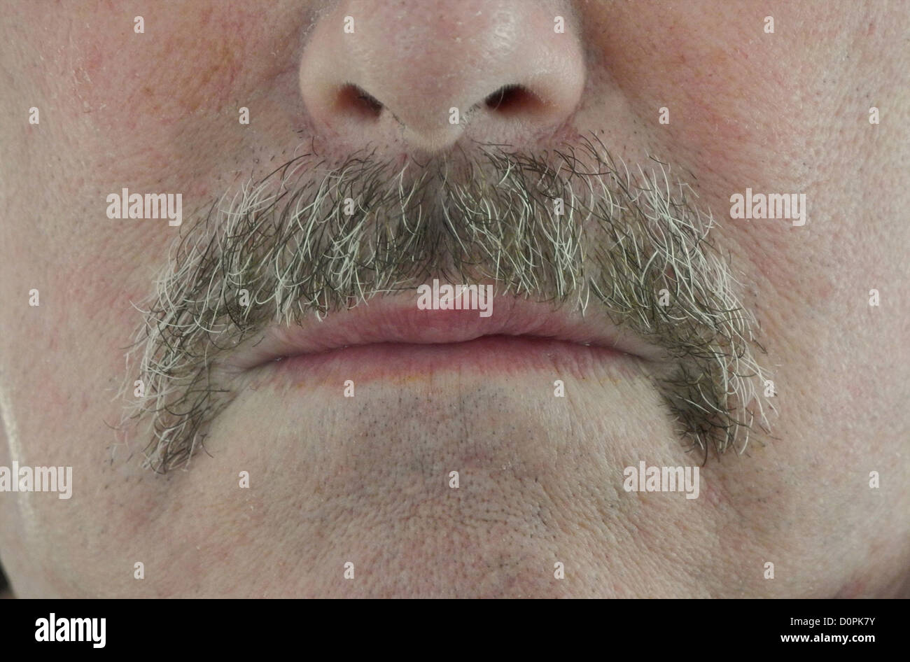 Wives and girl friends are celebrating the end of Movember - the moustache/mustache growing event taking place during - Stock Image