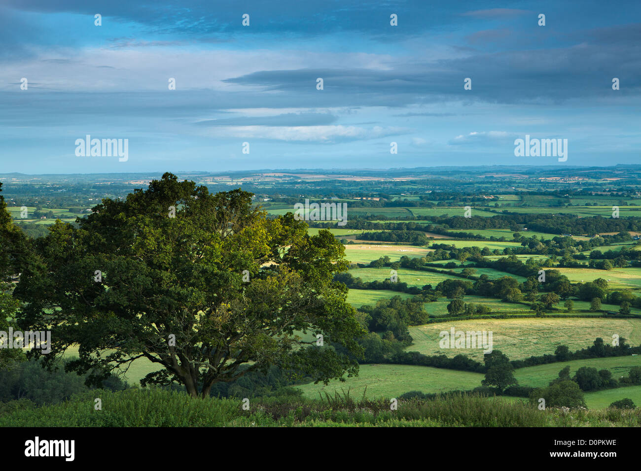 The Blackmore Vale from Bulbarrow Hill, Dorset, England, UK - Stock Image