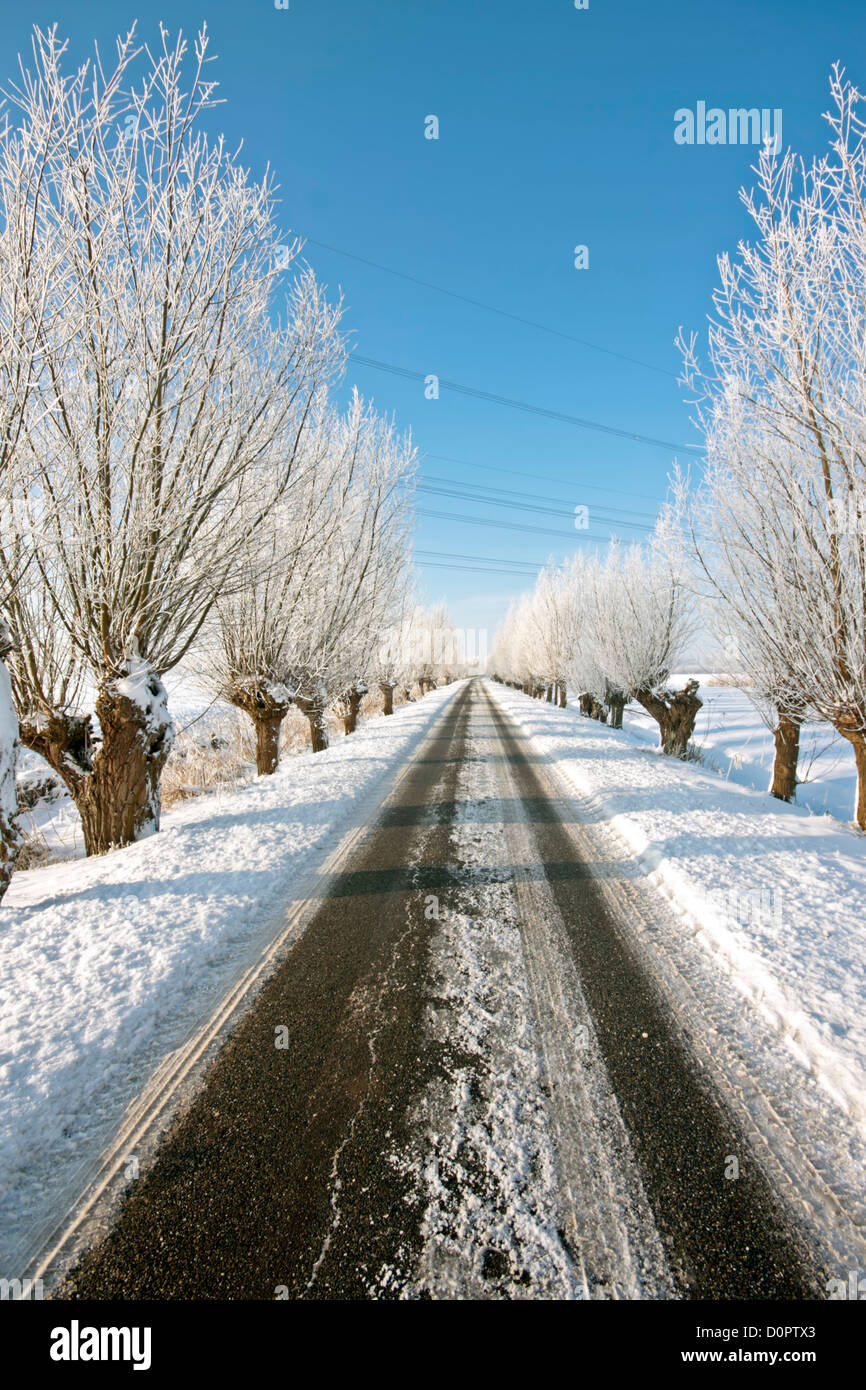 Snowy countryroad in winter in the countryside from the Netherlands Stock Photo