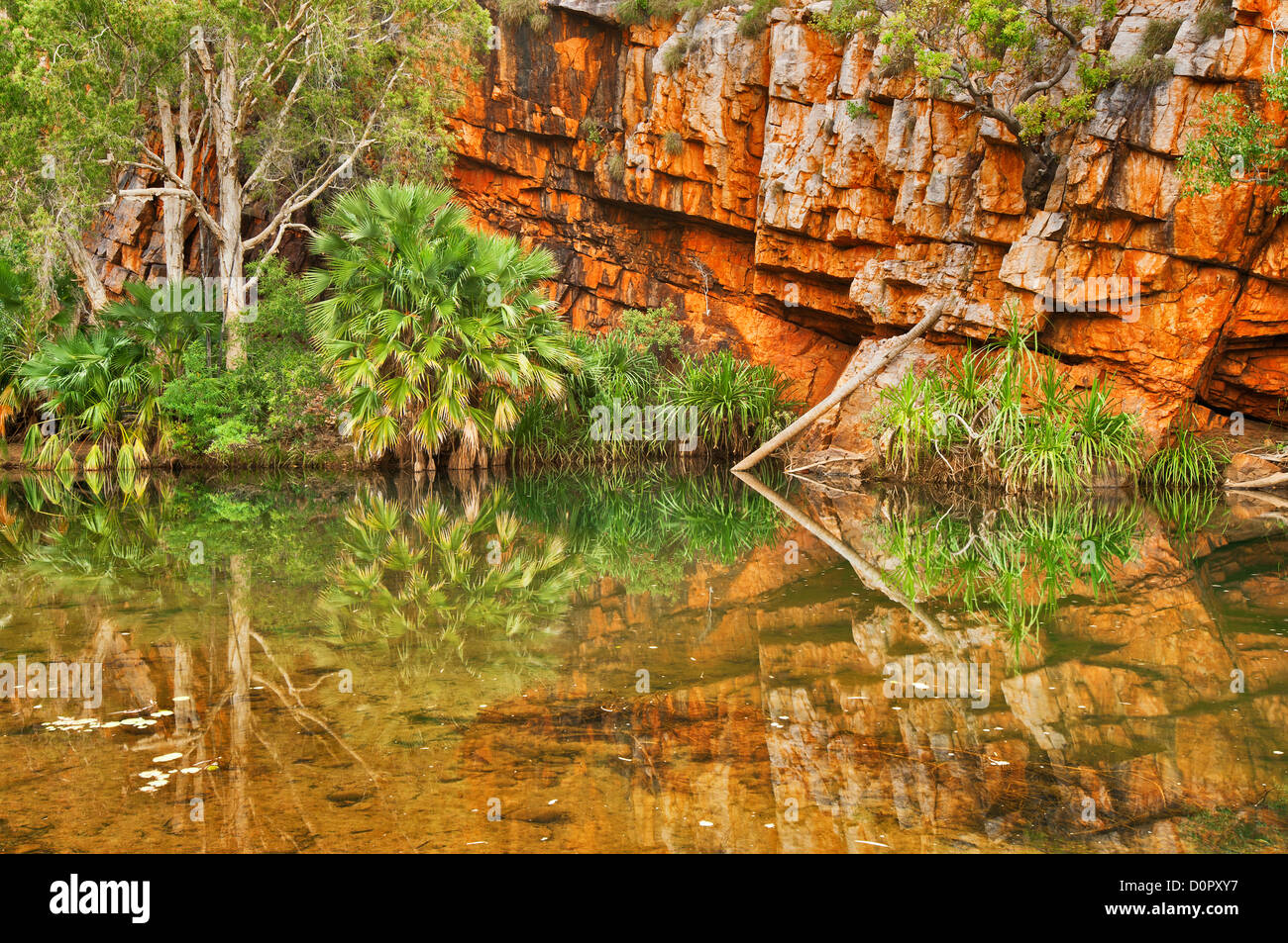 Reflections in Moonlight Gorge. - Stock Image