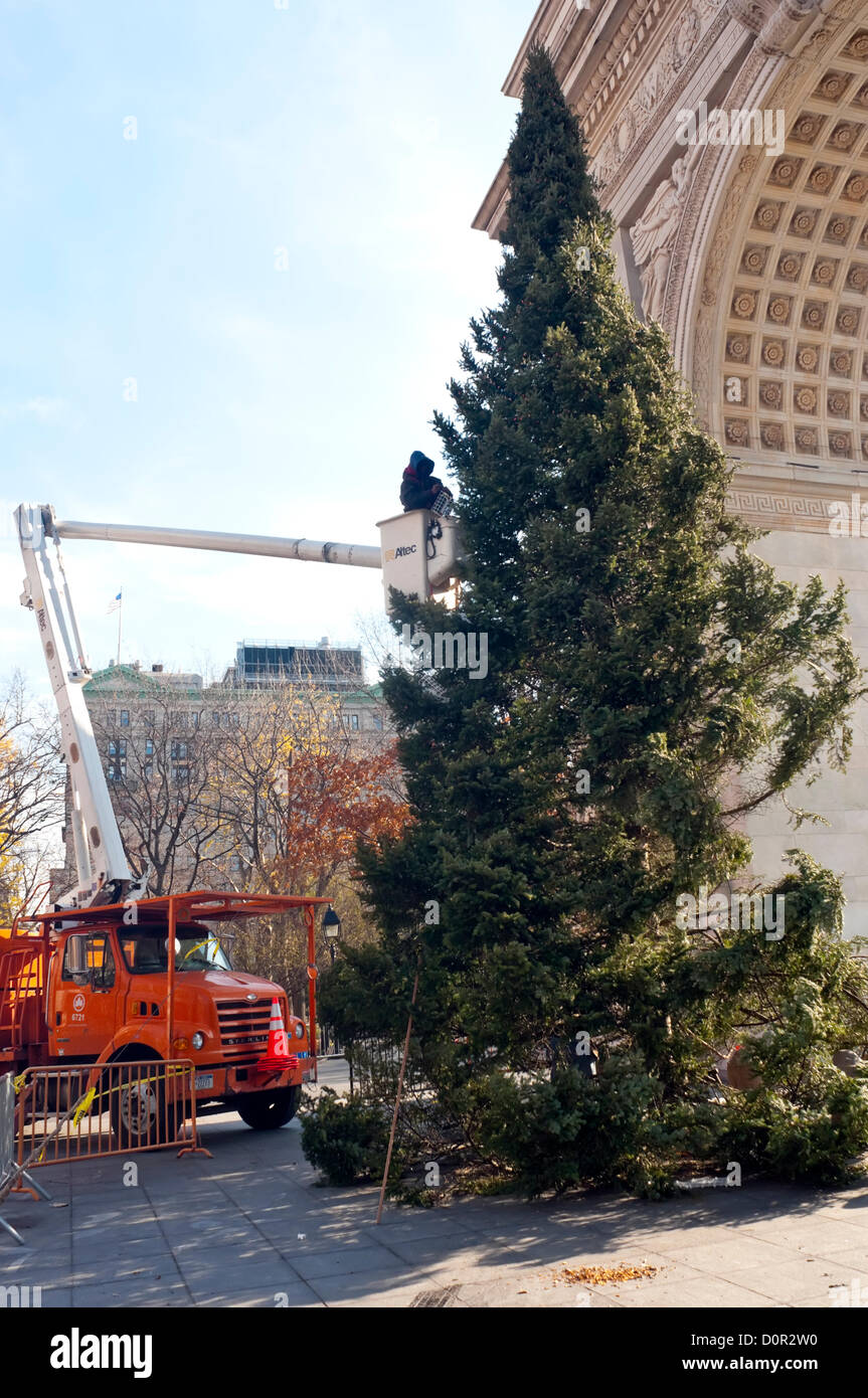New York, NY -  29 November 2012 Parks workers use a cherry picker to trim 45 foot Spruce in preparation of the Stock Photo