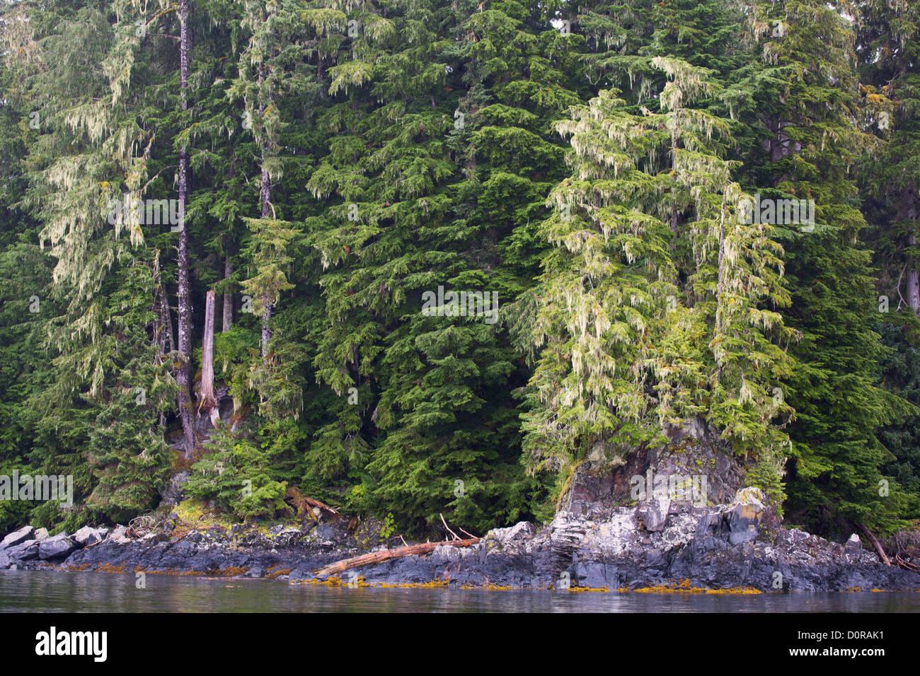 Tongass National Forest, Alaska. - Stock Image