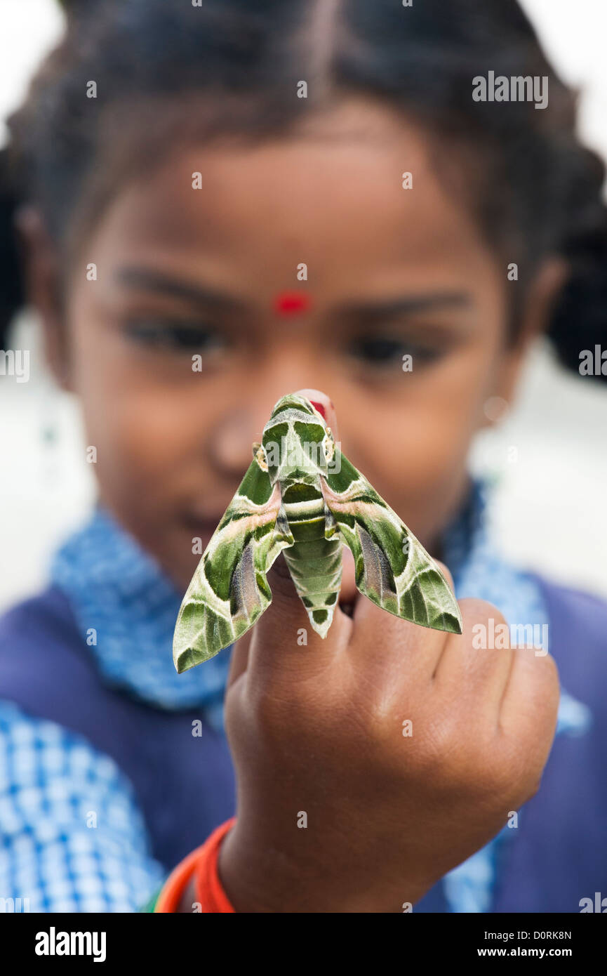 Young Indian school girl holding an Oleander Hawk moth . Daphnis nerii Stock Photo