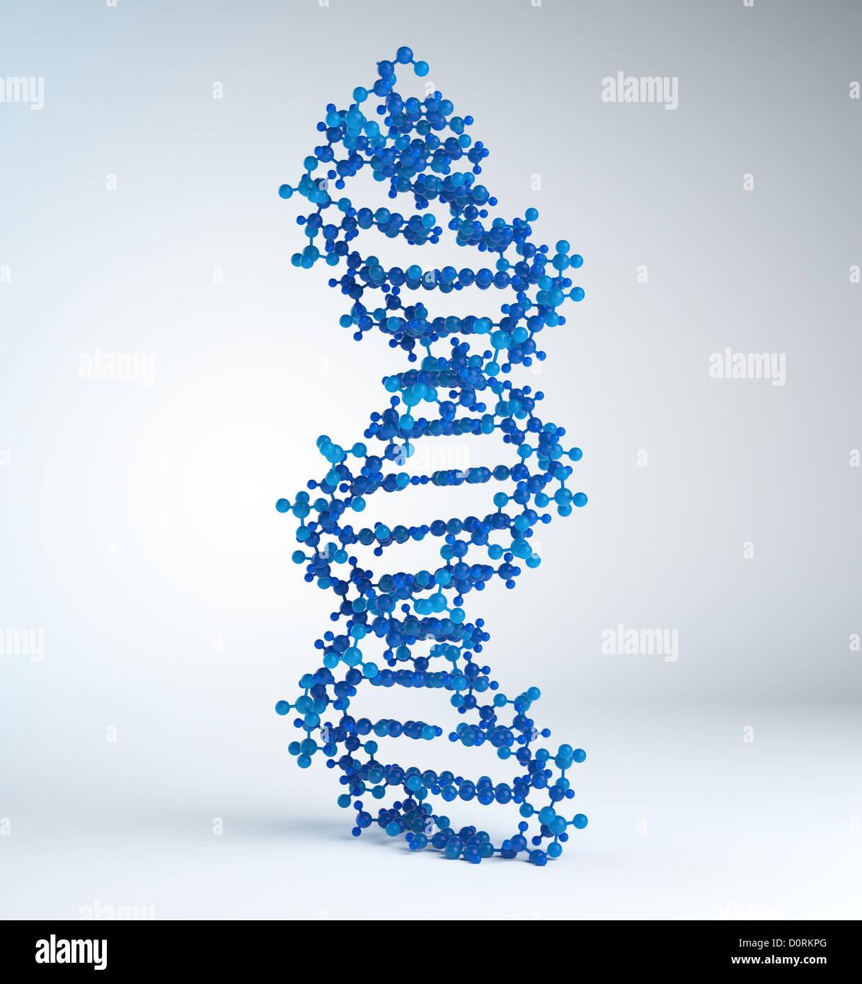 DNA strand model - Stock Image