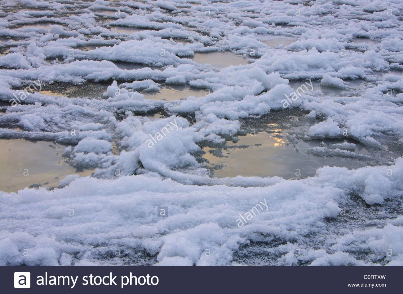 Austria, Vorarlberg, Rhine delta, Rhine, River, Fluss, Lake Constance, lake, winter, morning, fog, ice - Stock Image