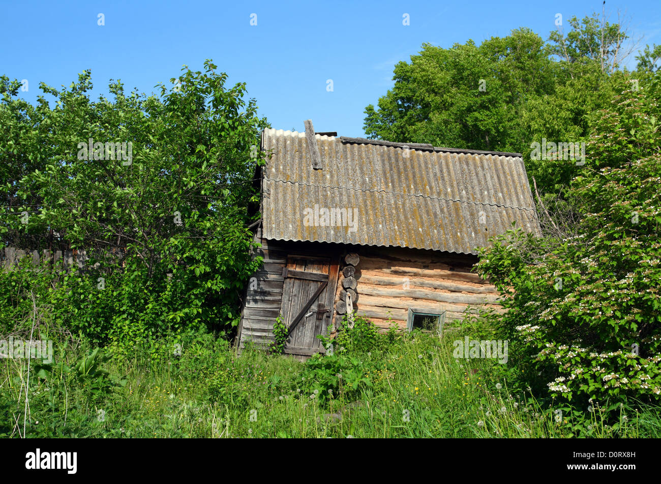 old obsolete bath-house in lush foliage - Stock Image