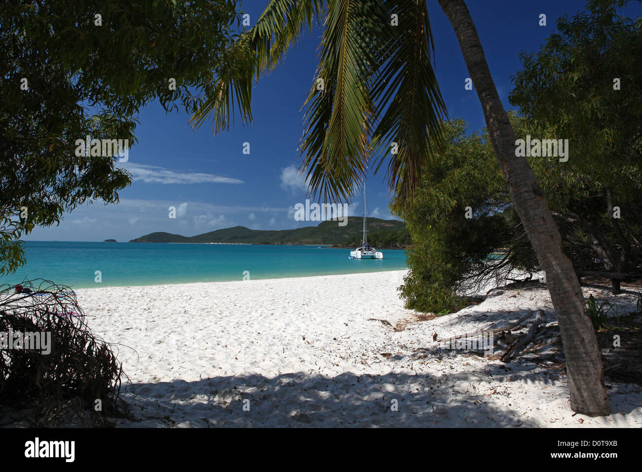 Whitsunday Island, Whitehaven Beach, seashore, sand, white, softy, sea, turquoise, clear, warmly, tropics, dream - Stock Image