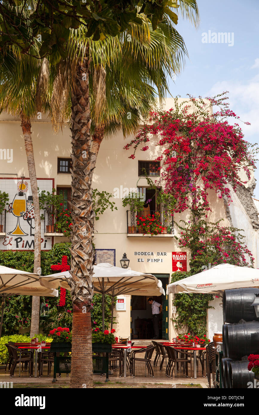 Bodega Bar El Pimpi Malaga Andalusia Spain Stock Photo 52172420 Alamy