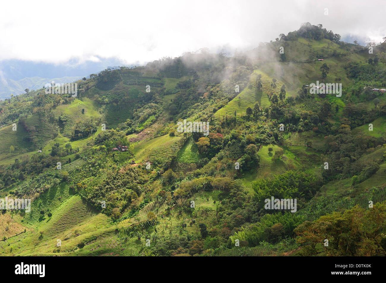 Hill Landscape Medellin Farmland Colombia South America Green Stock Photo Alamy