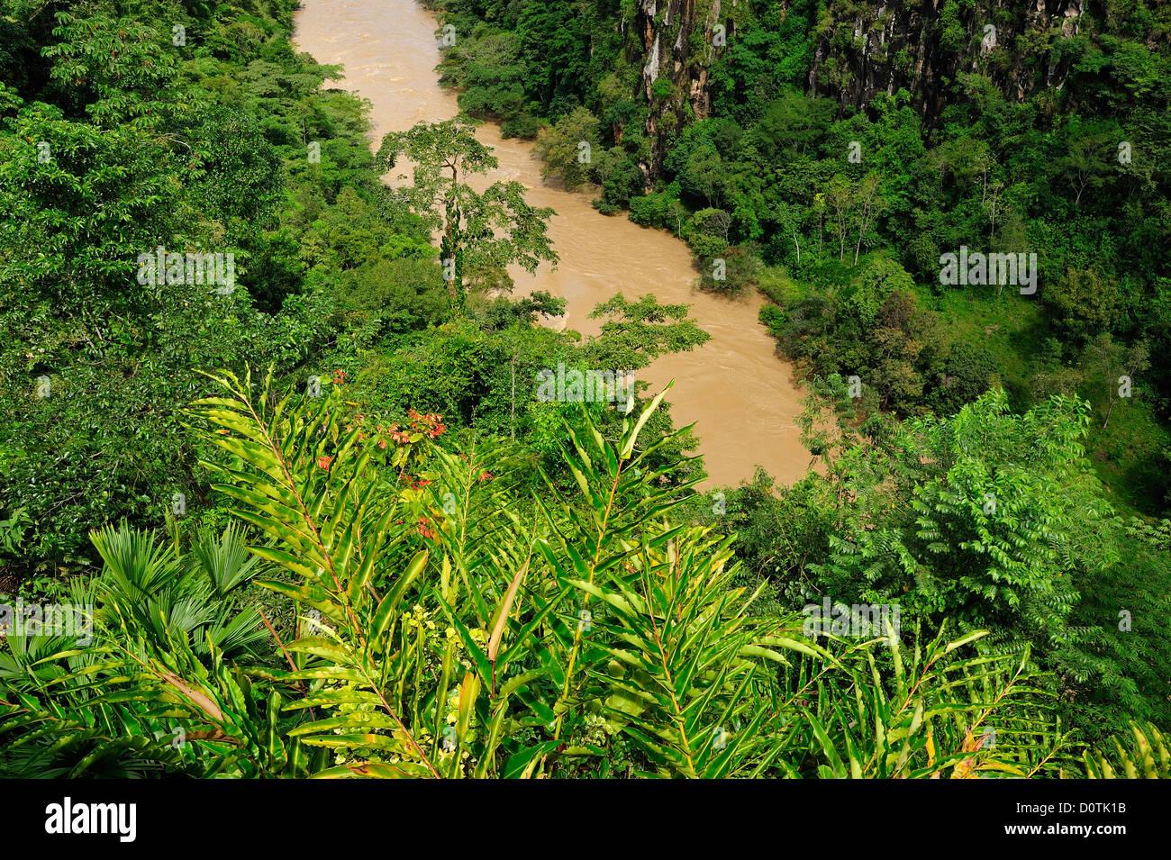 Canyon, green, lush, River, flooding, tropical, Rio Cauca