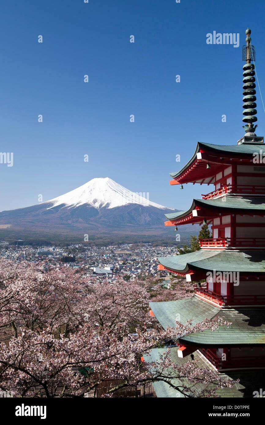 Japan, Asia, holiday, travel, Cherry Blossoms, Pagoda, Arakura, Sengen, Shrine, Fuji, Mount Fuji, Fujiyama, Tsuru, - Stock Image