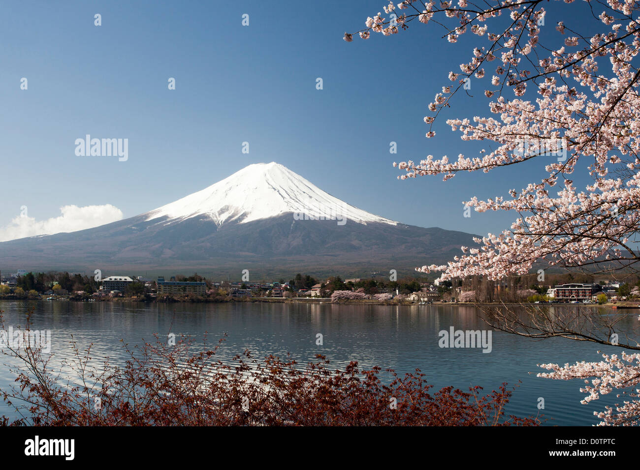Japan Asia Holiday Travel Cherry Blossoms Yamaguchi Lake Fuji Mount Fujiyama Landscape Mountain Snow Spring V