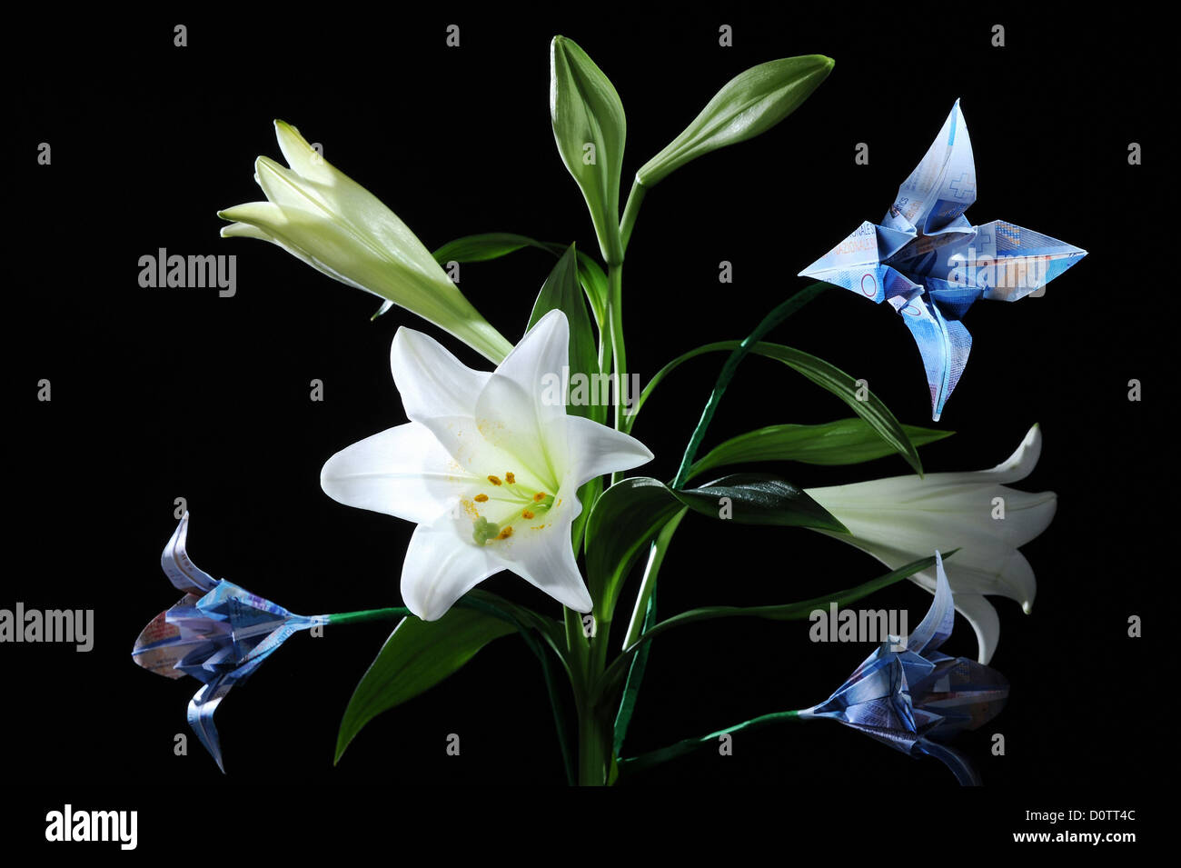 Flowers Origami Notes Money Growth Prosper Grow Swiss Franc