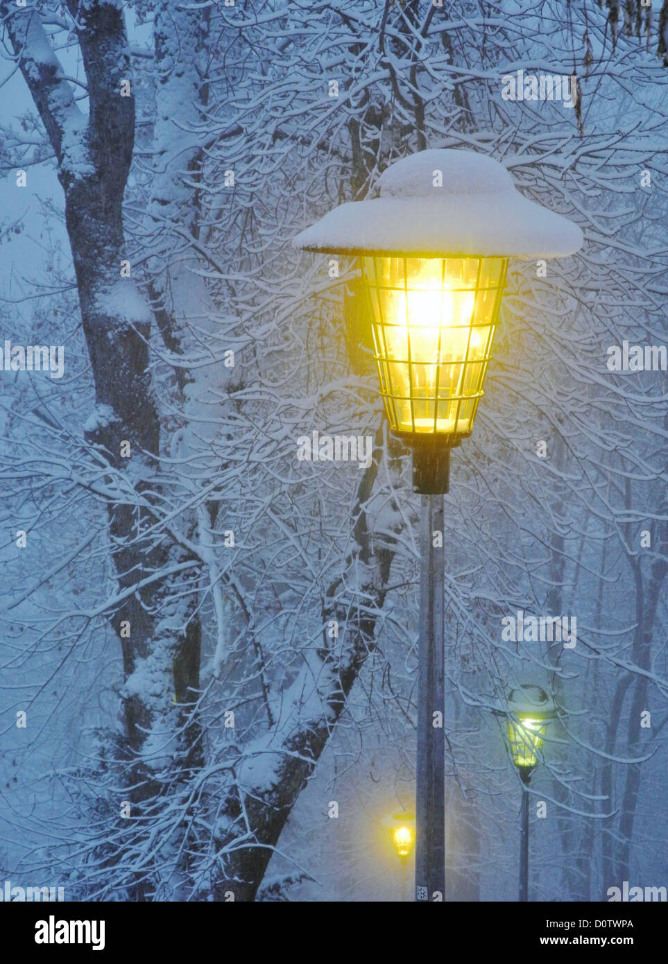 Switzerland, Europe, Leysin, winter, snow, cold, lantern, street ...