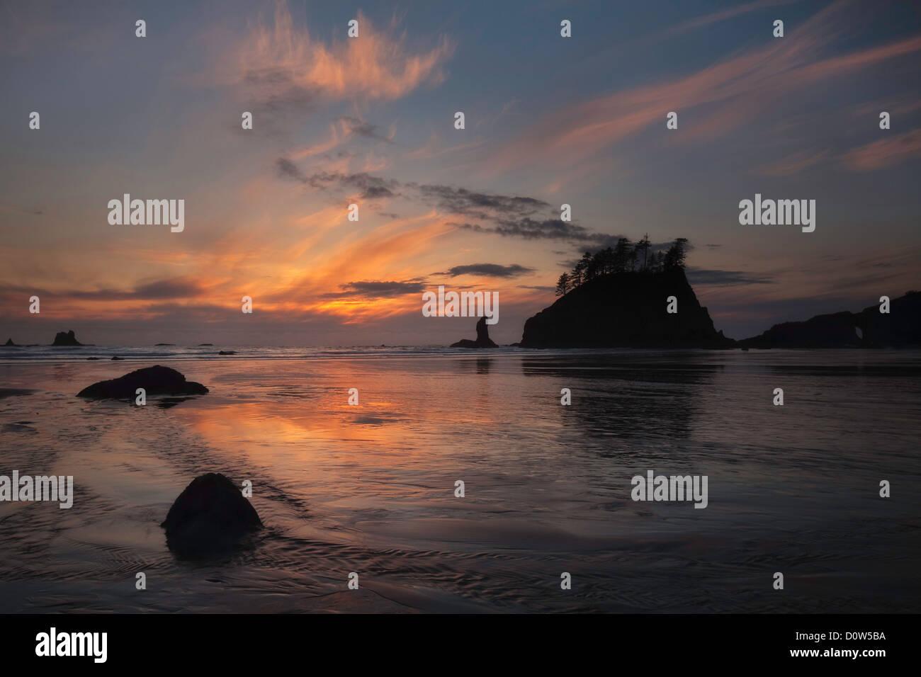 USA, Vereinigte Staaten, Amerika, Olympic, Nationalpark, Second beach, 2. Beach, Wasser, Strand, Ozean, Pazifischer - Stock Image