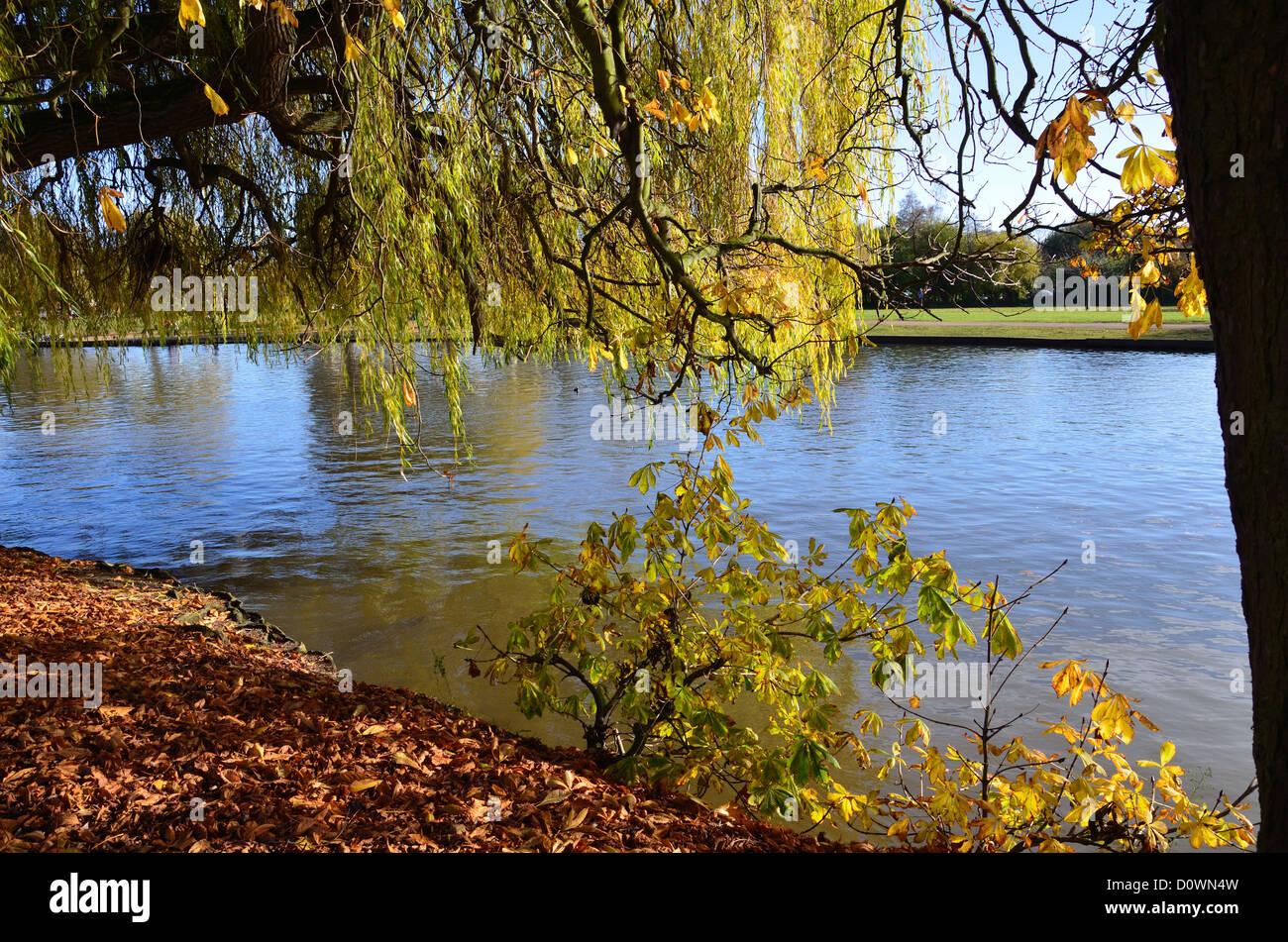 Autumn River Scene - Stock Image