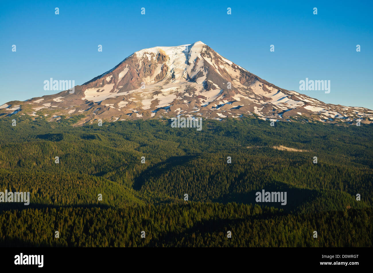 Mount Adams from Council Bluff, Gifford Pinchot National Forest, Washington. - Stock Image