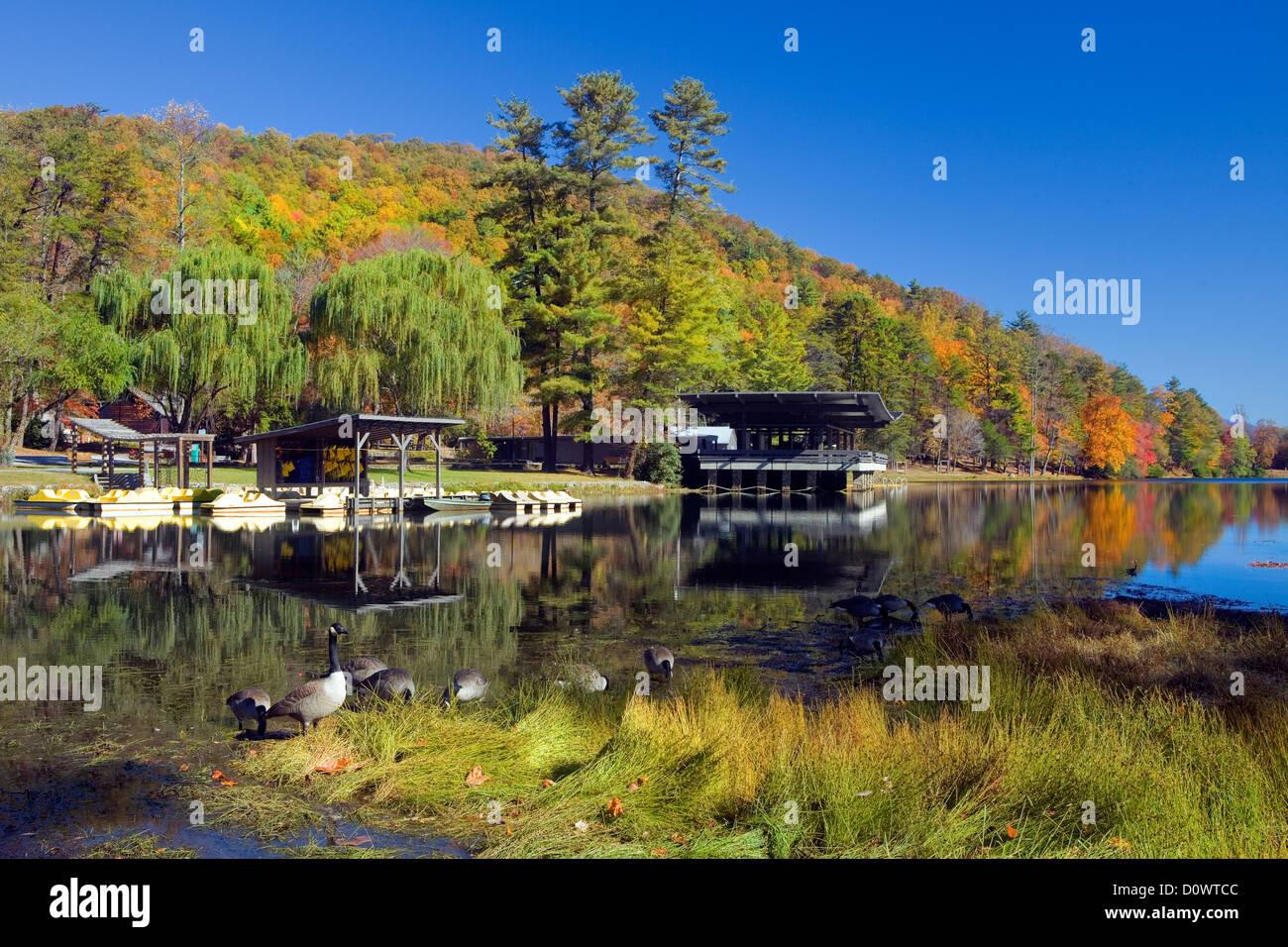 GA00199-00...GEORGIA - Trahlyta Lake in Vogel State Park. - Stock Image