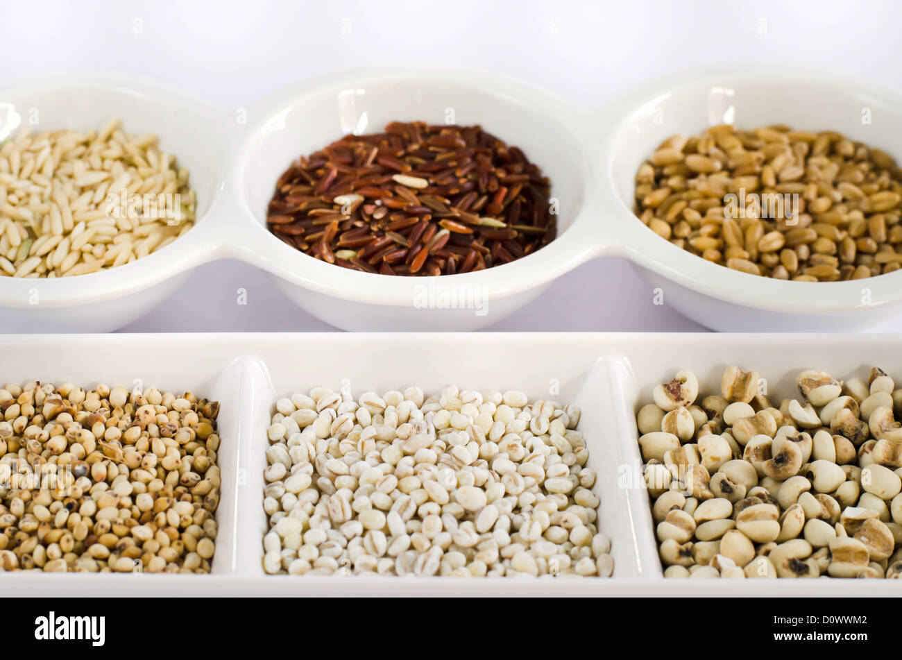 Grain and Cereal Set , rice , red rice , wheat, job's tears