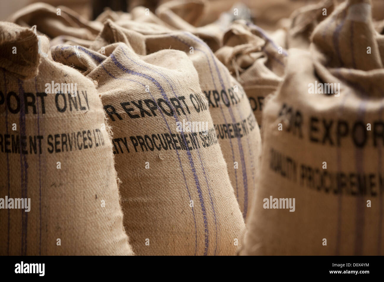 Bags of coffee beans are ready for export at a warehouse in Kampala, Uganda, East Africa. - Stock Image
